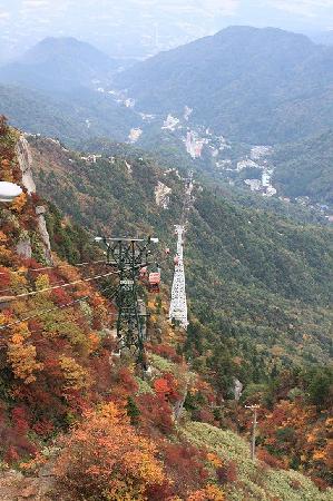 Komono-cho, Japón: ロープウェーと紅葉