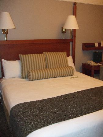 โรงแรมแฮนด์เลย์ ยูเนี่ยนสแควร์: Hotel room
