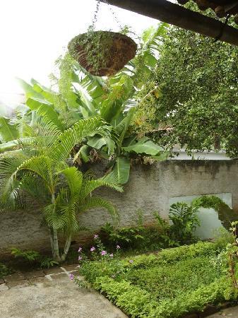Hostal Buen Viaje: El jardín