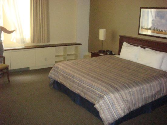 Le Square Phillips Hotel & Suites: Our comfortable bed