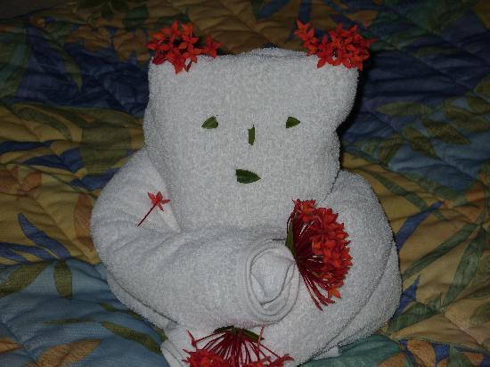 Viva Wyndham Tangerine: little  bear left by maid