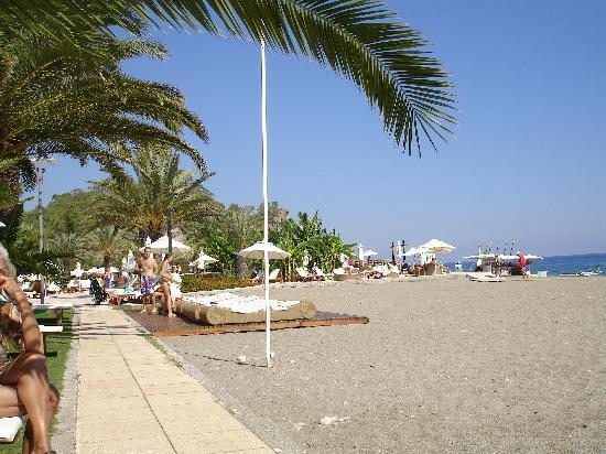 Club Med Palmiye: The beach
