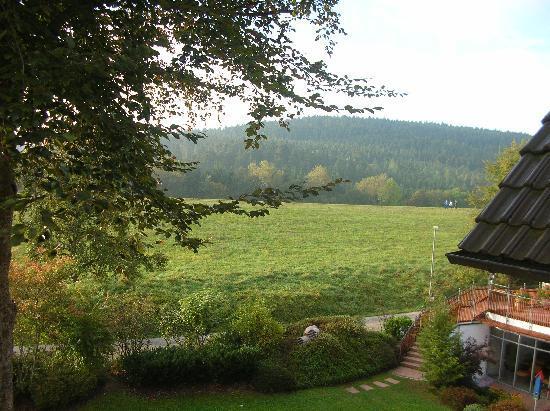 Hotel Grüner Wald: Ausblick aus dem Zimmer gegen Westen