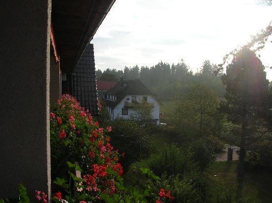 Hotel Grüner Wald: Blumengeschmückte Balkone