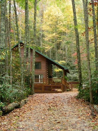 Iron Mountain Inn B&B: The lovely Creekside Chalet from the private drive