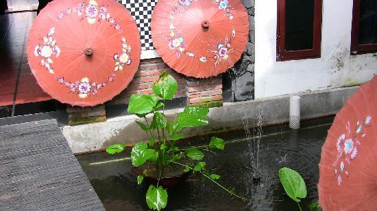 Ngaglik, Indonesia: pond