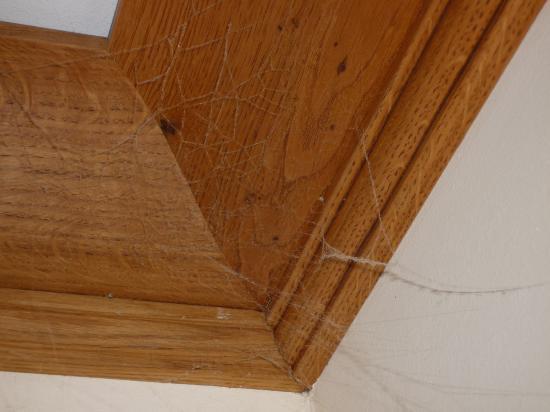 Alpendomizil Neuhaus: Spinnweben