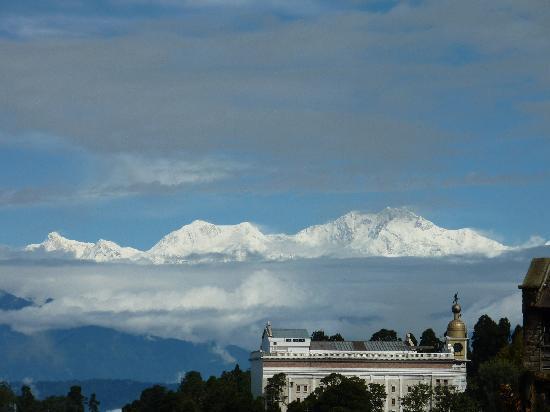 Snow Lion HomeStay: Darjeeling