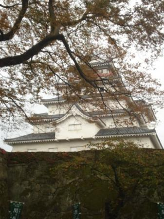Tsurugajo Castle Photo