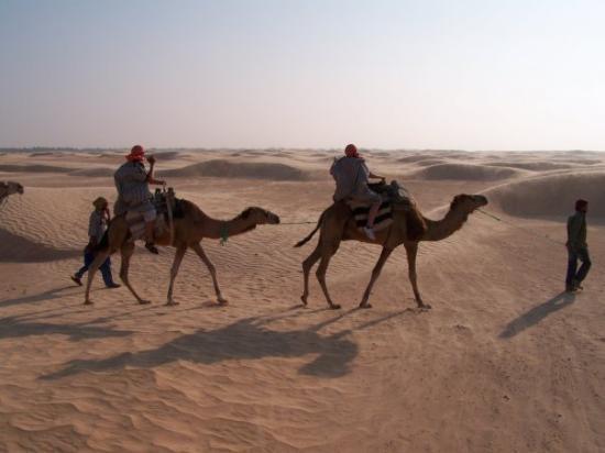 Nefta, Tunus: Sahara