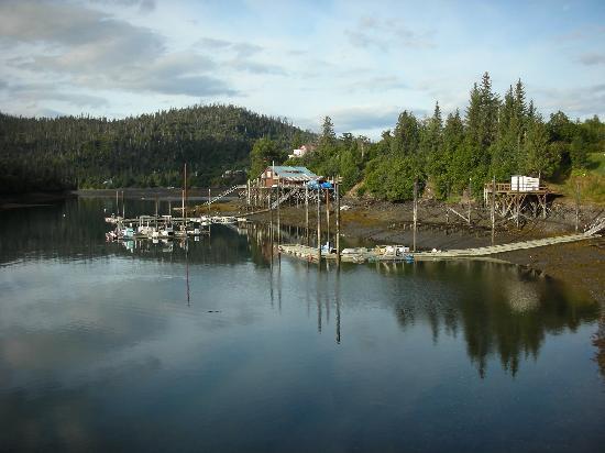 Alaska's Ridgewood Wilderness Lodge: Scenery