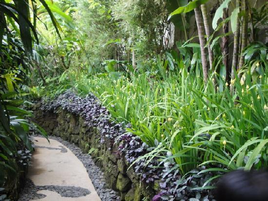 Gayatri Villa : Walking path to Vila Pratiwi