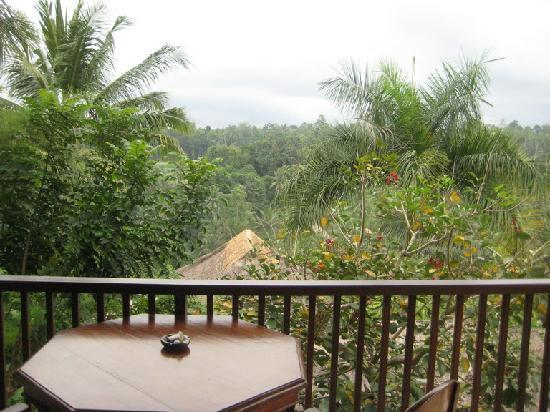 Gayatri Villa: View from Balcony of Main Bedroom