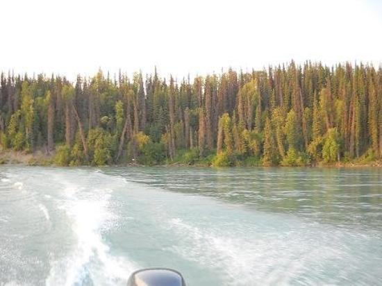 Soldotna, อลาสกา: Riding in Susan's Dad's boat on the Kenai (KEY-nigh) River. The was was the clearest aquamarine