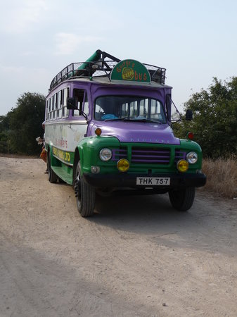 George's Fun Bus