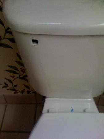 Hampton Inn Birmingham / Fultondale I-65: Toilet is missing a handle.