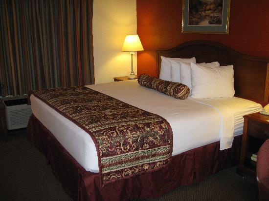 Best Western Plus Roswell/Alpharetta: Very Comfortable Room