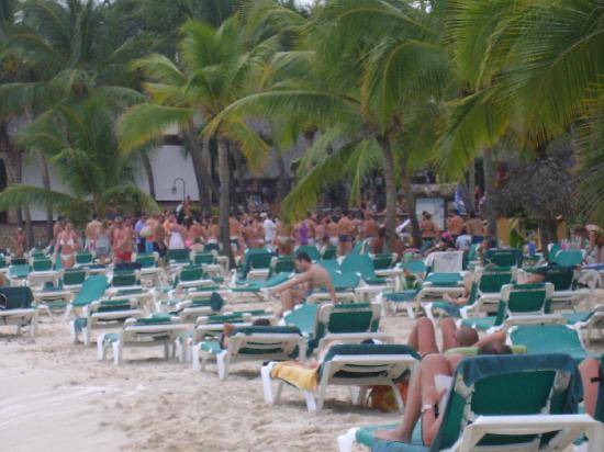 Viva Wyndham Dominicus Beach: fiesa playa