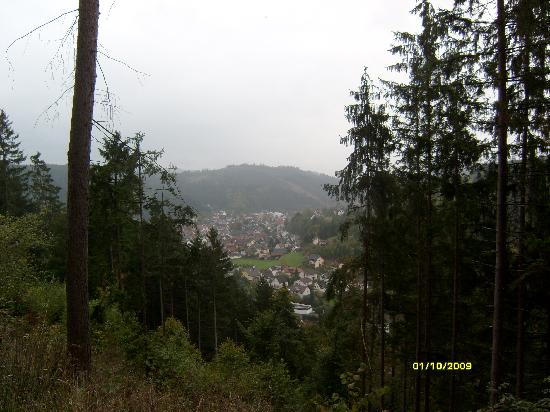Aparthotel Frankenwald: View for city from mountains which are around
