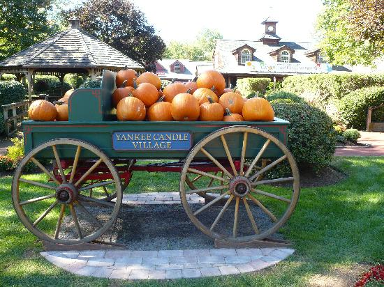 South Deerfield, MA: Cute Pumpkin Display Out Front