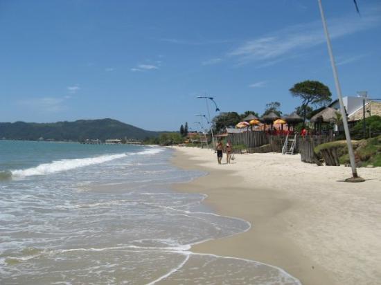 Fotos da praia de canasvieiras sc 67