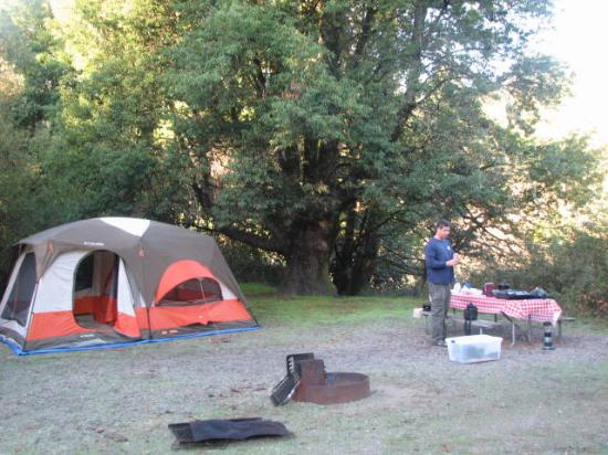 Casini Ranch Campground: Very quiet, only racoons and foxes!