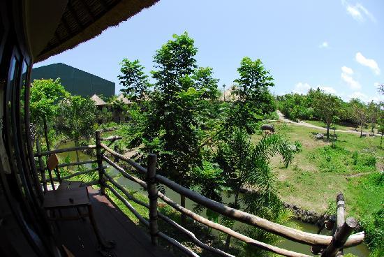 Mara River Safari Lodge: View from room 210 Twiga