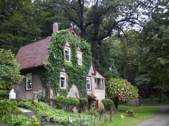 Aunties place in tuxedo park ny my home away from home for Tuxedo house