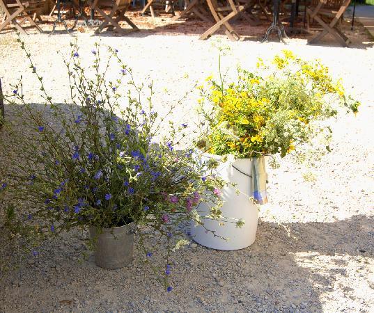 Pierre-Perthuis, France: wild flowers