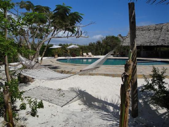 Zanzibar Villas : hamoks and chill places