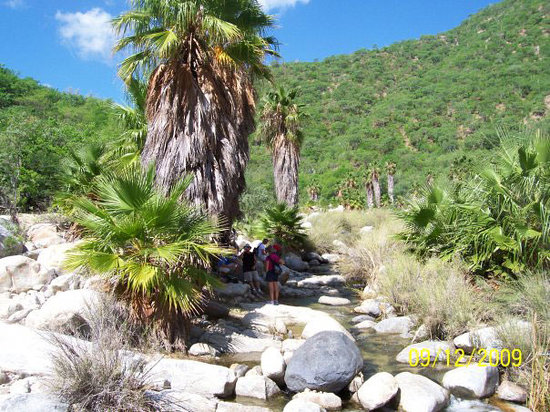 Cabo Outfitters : Hiking in Santiago