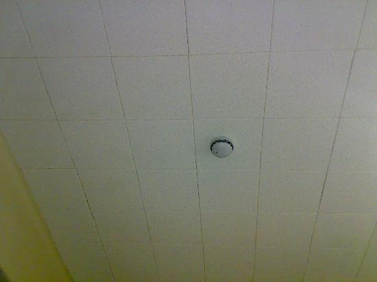 Savannah Guest House: scary ceiling