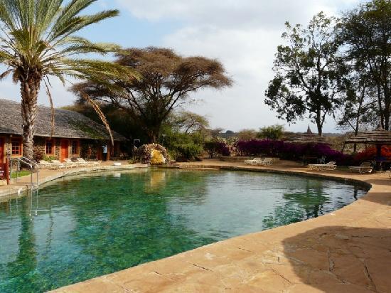 Amboseli Sopa Lodge: Piscine