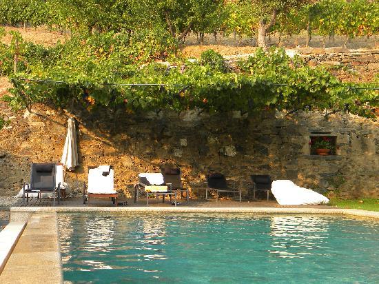 Quinta do Vallado: swiming Pool
