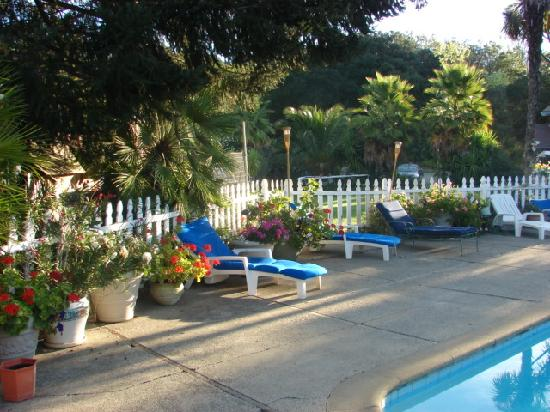 Hillcrest Bed & Breakfast: pool area with loads of flowers