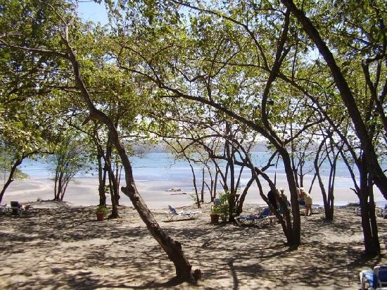 Allegro Papagayo: Headed toward the Beach