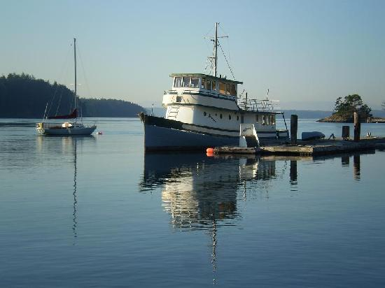 Lieber Haven Resort & Marina: Captain Dave's Tug