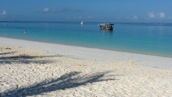 แซนซิบาร์, แทนซาเนีย: kendwa beach