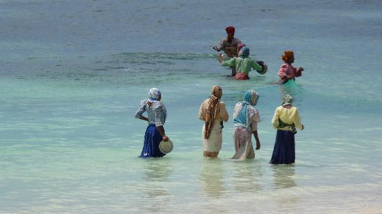 แซนซิบาร์, แทนซาเนีย: donne di zanzibar
