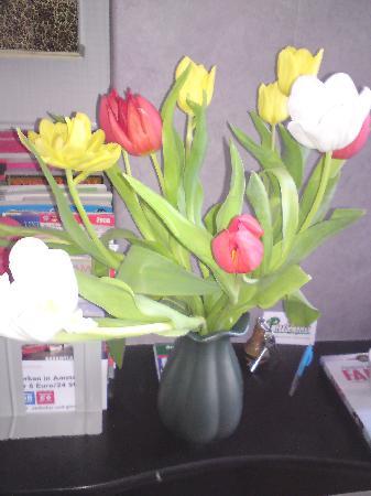 Parkzijde Bed & Breakfast: Tulips in the room