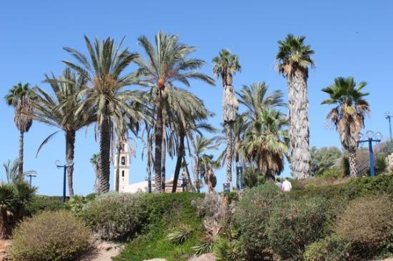 Tel Aviv, Israel: Jaffa, Israel