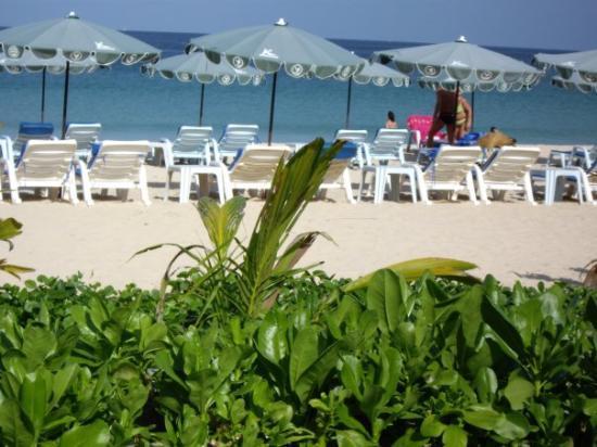 Kata Beach : An jedem Tag so ein herrliches Wetter, und das im Februar 2009...