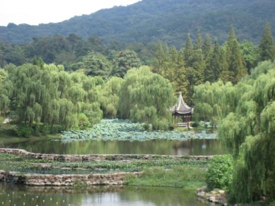 Montaña Púrpura: Zijin Shan (Purple & Gold Mountain)