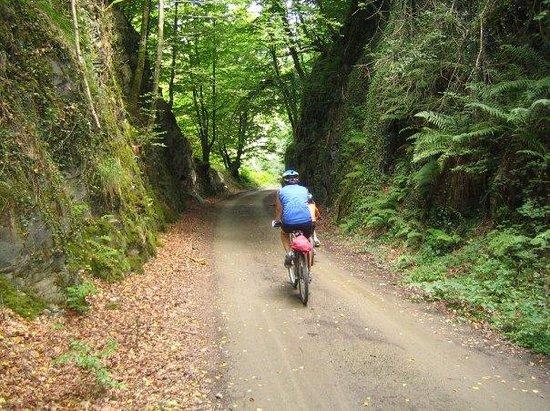 Via Verde del Plazaola (Lekunberri/Andoain).Entre Uitzi i Leitza. (Nafarroa/Euskadi.)