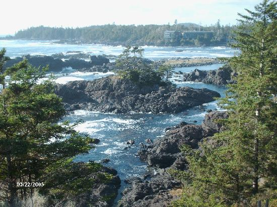Ucluelet, Canada: Wild Pacific Train September 2009