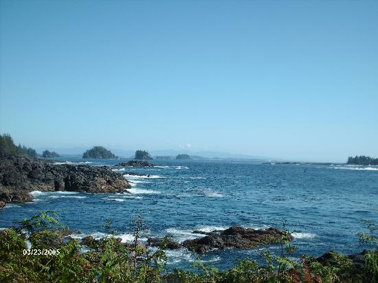 Ucluelet, Canada: Just missed the spout, darn it!