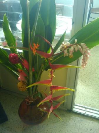 Maravilla Guesthouse: Flowers and lots of tropical flowres
