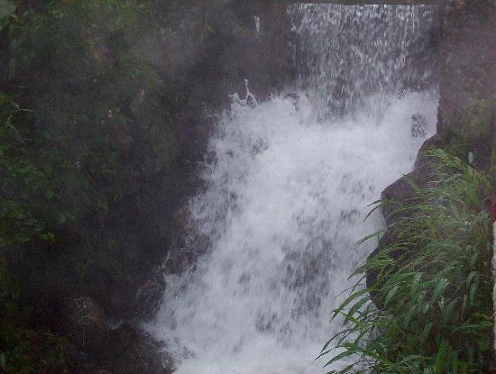 Urumbi Hill Palace Plantation Resort: Water fall in front of  Room with Natural Swimming Pool