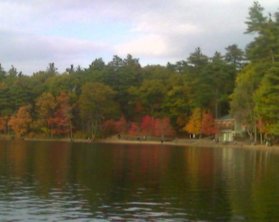 Walden Pond State Reservation: sitting by Walden Pond Good day to contemplate ;)