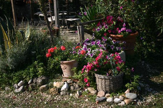 Aia Vecchia di Montalceto: beautiful details